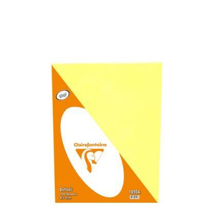 Εικόνα της Small Pack A3/80gr (100sh) Daffodil